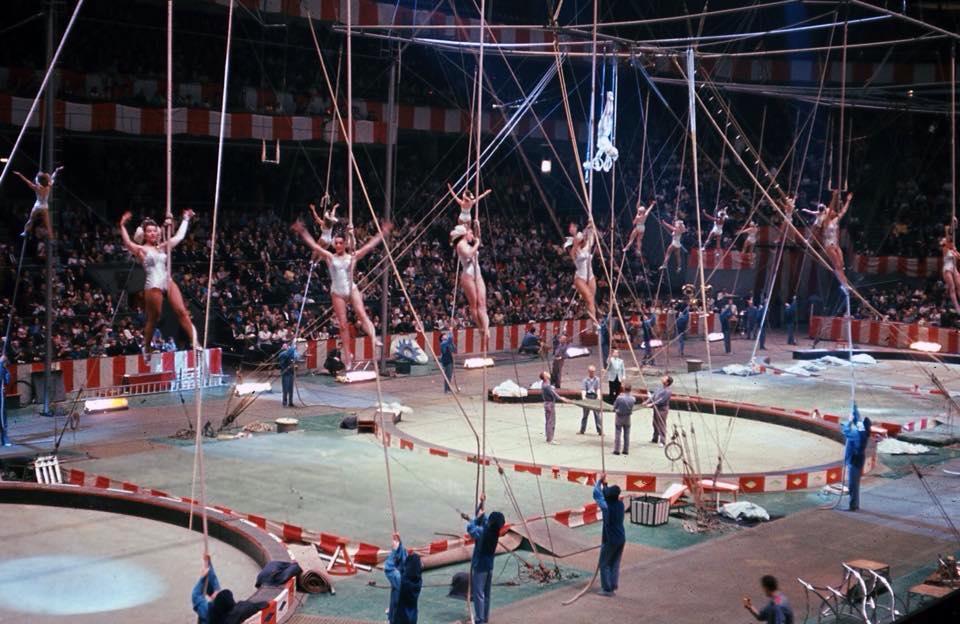 cirkusz_2